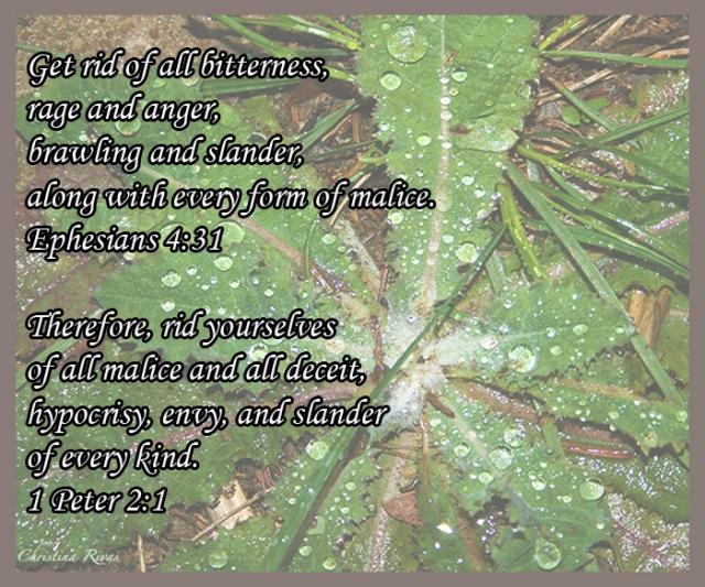 Weeds Verses