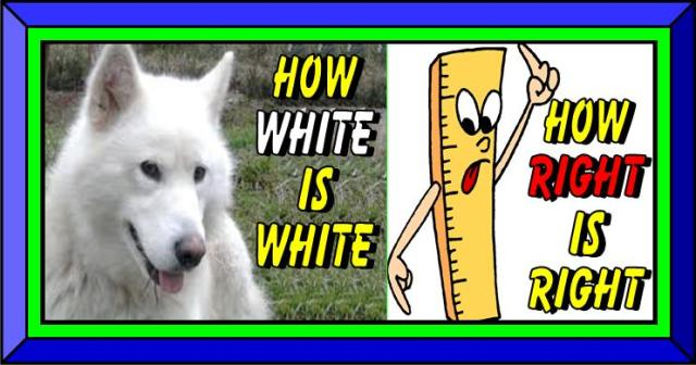 How white is white