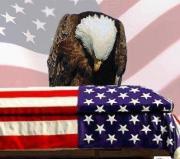 69748_4424090652435_978657956_n praying eagle