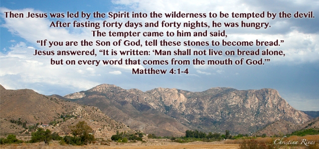 Matthew 4 1 4