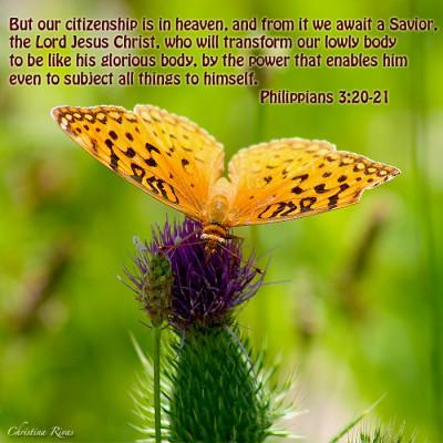 Philippians 3 20 21