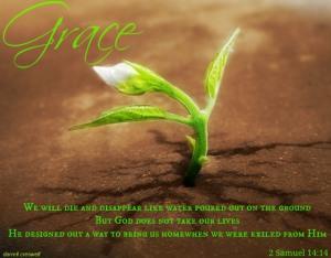 2-samuel-1414-appointed-die-life-grace