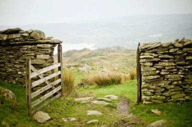 sheep gate no outcasts.org